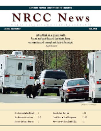 2020_Year In Review_NRCC Newsletter